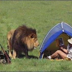 lion_hunter_tent