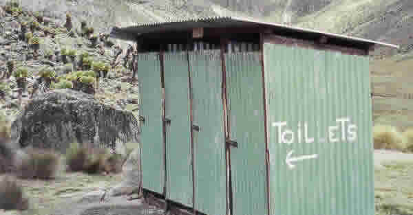 ANC Toilet Scandal