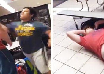 Smaller kid beats up Bully