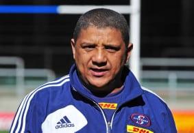 springbok_coach_candidate1