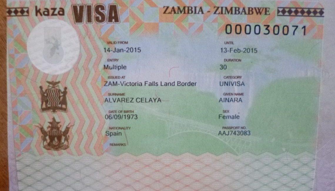 SA will benefit from revival of KAZA Visa - South African